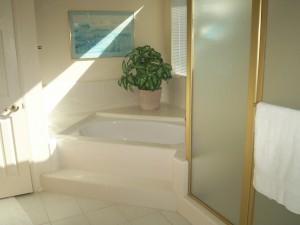 Bath Remodel San Jose CA Reborn Bathroom Solutions - Bathroom remodeling san jose ca